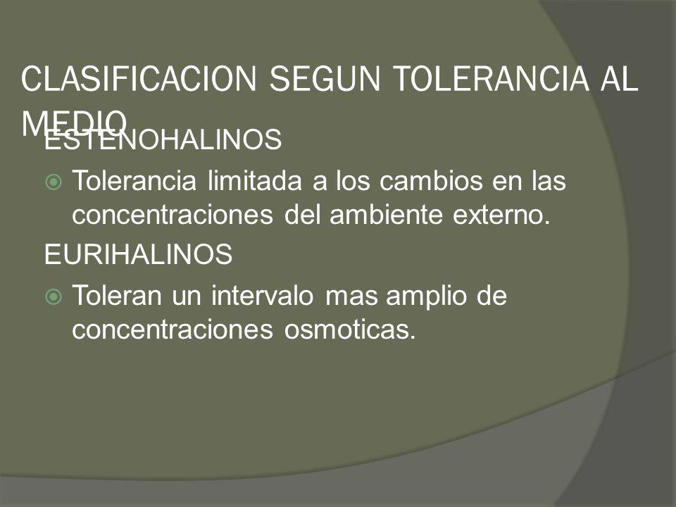 CLASIFICACION SEGUN TOLERANCIA AL MEDIO ESTENOHALINOS Tolerancia limitada a los cambios en las concentraciones del ambiente externo. EURIHALINOS Toler