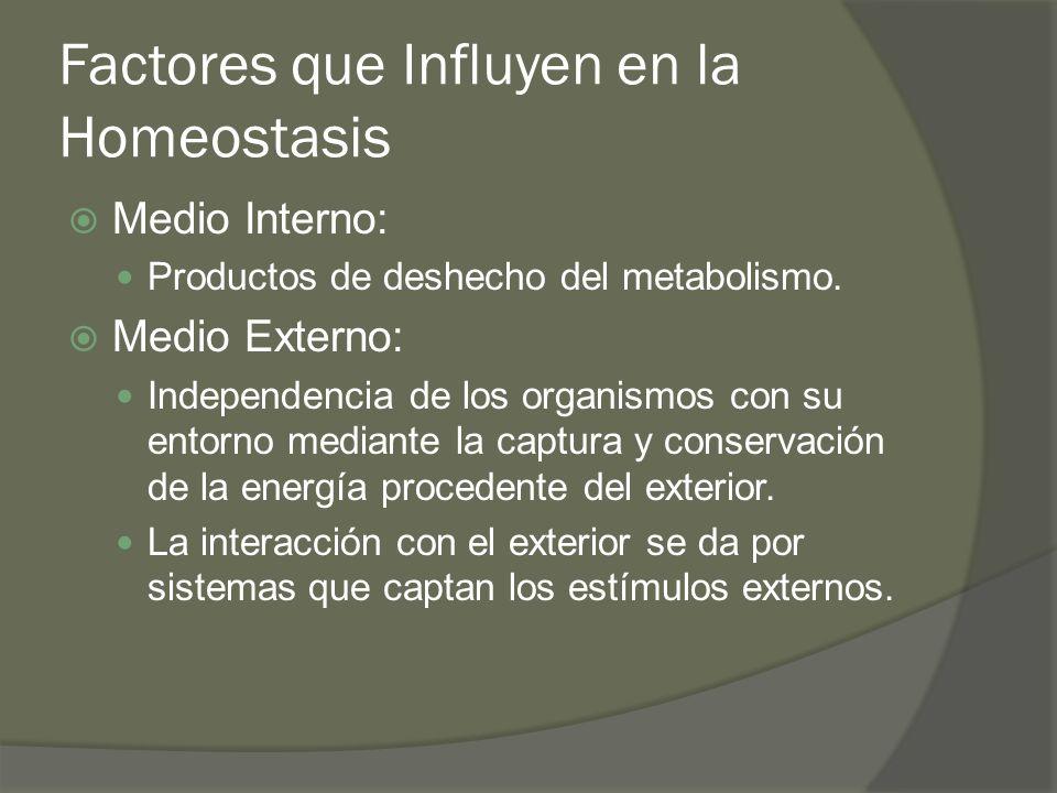 Factores que Influyen en la Homeostasis Medio Interno: Productos de deshecho del metabolismo. Medio Externo: Independencia de los organismos con su en