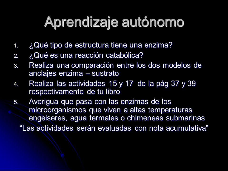 Aprendizaje autónomo 1. ¿Qué tipo de estructura tiene una enzima? 2. ¿Qué es una reacción catabólica? 3. Realiza una comparación entre los dos modelos