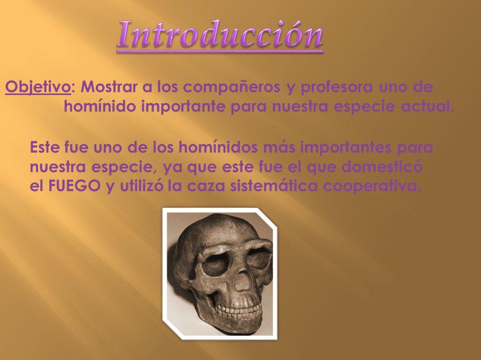 Objetivo: Mostrar a los compañeros y profesora uno de homínido importante para nuestra especie actual. Este fue uno de los homínidos más importantes p