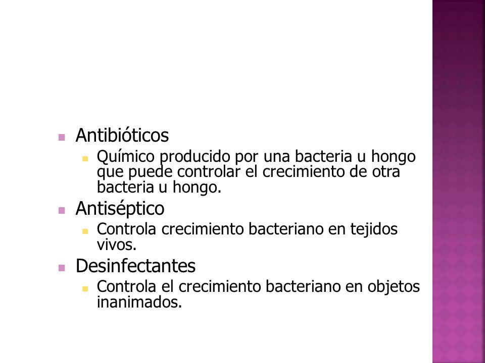 Antibióticos Químico producido por una bacteria u hongo que puede controlar el crecimiento de otra bacteria u hongo.