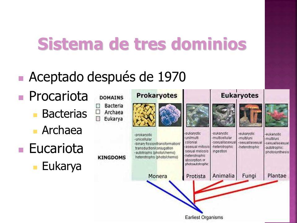 Sistema de tres dominios Aceptado después de 1970 Procariota Bacterias Archaea Eucariota Eukarya