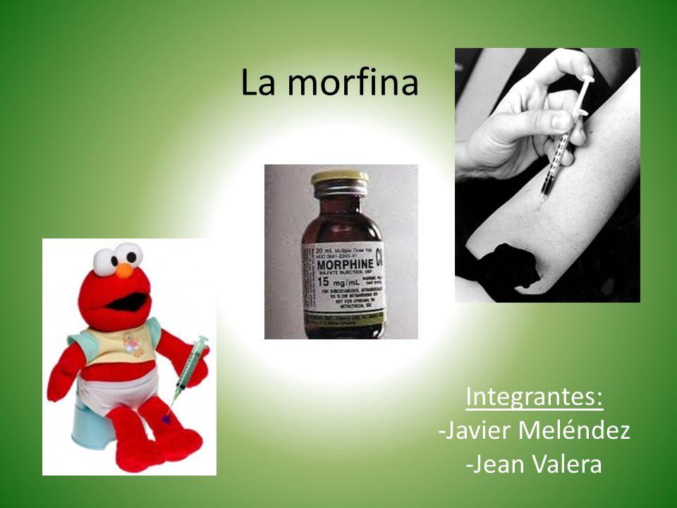 La morfina Integrantes: -Javier Meléndez -Jean Valera