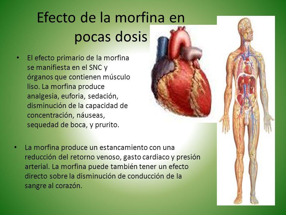 Efecto de la morfina en pocas dosis El efecto primario de la morfina se manifiesta en el SNC y órganos que contienen músculo liso. La morfina produce