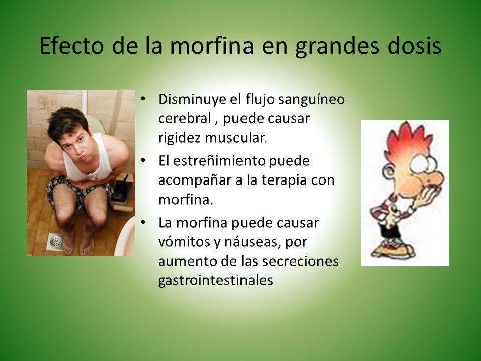 Efecto de la morfina en grandes dosis Disminuye el flujo sanguíneo cerebral, puede causar rigidez muscular. El estreñimiento puede acompañar a la tera