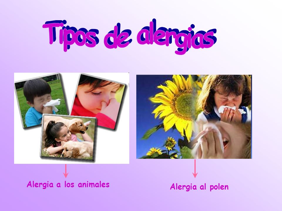 Alergia al polen Alergia a los animales