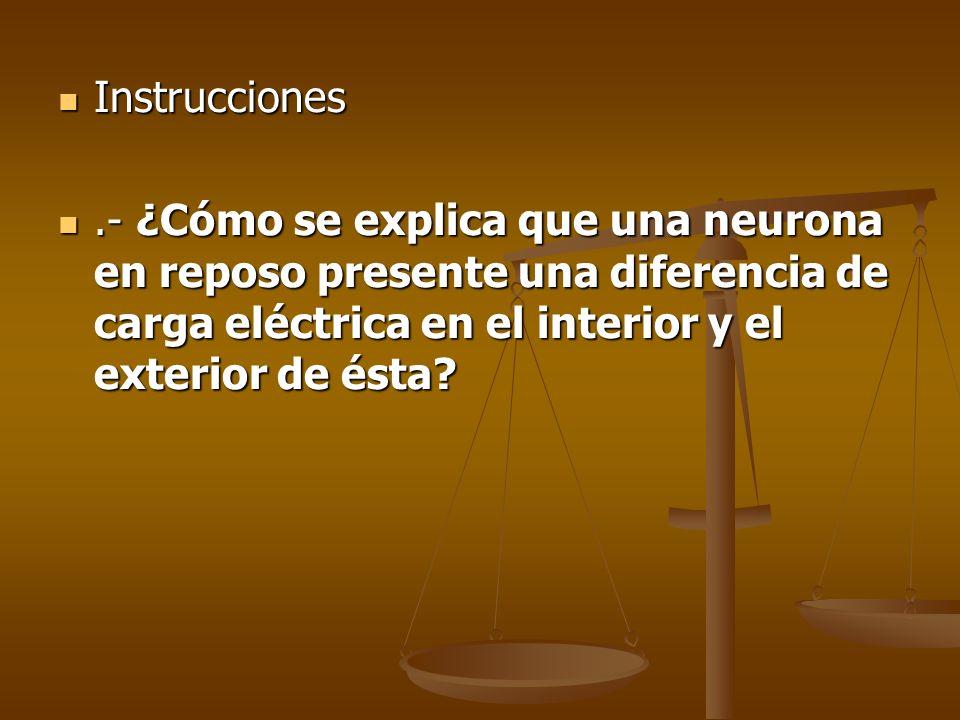 Instrucciones Instrucciones.- ¿Cómo se explica que una neurona en reposo presente una diferencia de carga eléctrica en el interior y el exterior de és