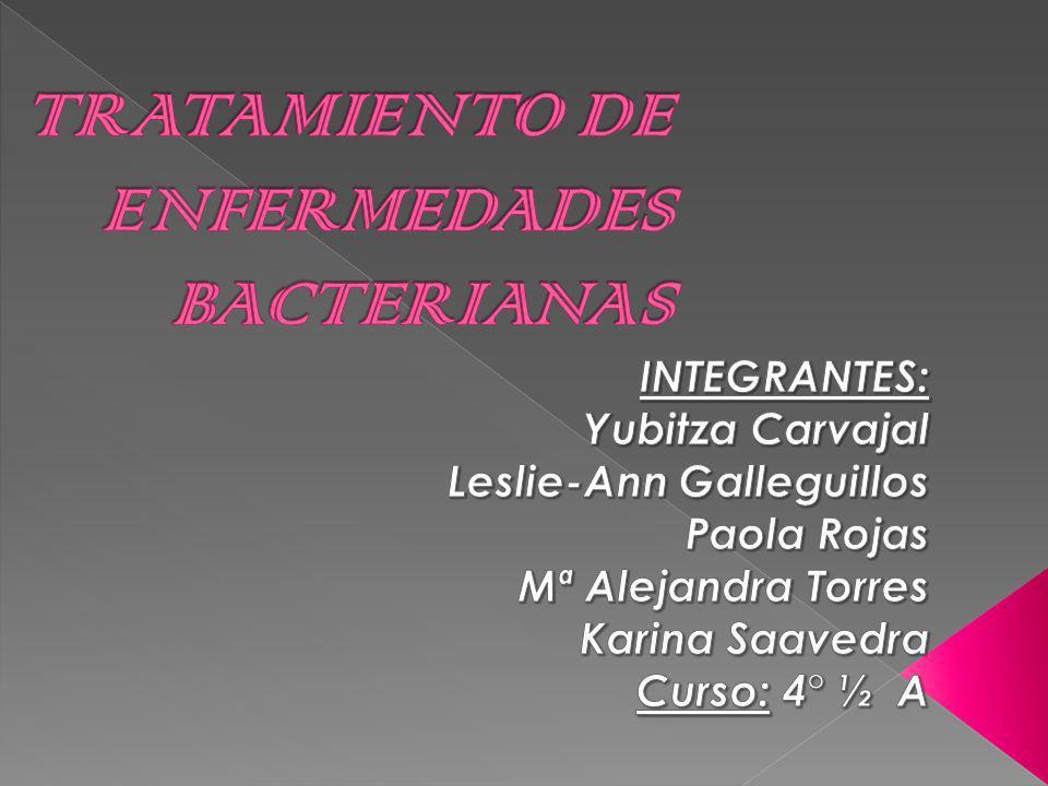 Son microorganismos unicelulares que presentan un tamaño de algunos micrómetros de largo.