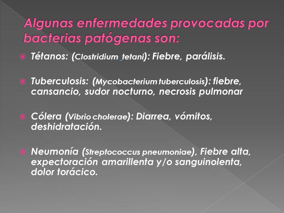 Tétanos: ( Clostridium tetani ): Fiebre, parálisis. Tuberculosis: ( Mycobacterium tuberculosis ): fiebre, cansancio, sudor nocturno, necrosis pulmonar