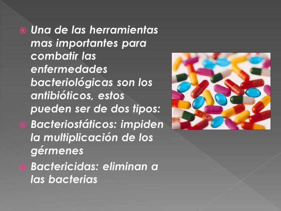 Una de las herramientas mas importantes para combatir las enfermedades bacteriológicas son los antibióticos, estos pueden ser de dos tipos: Bacteriost