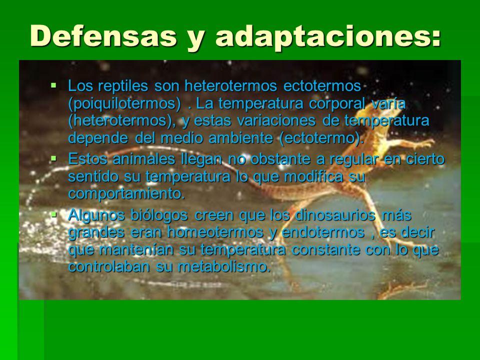 Defensas y adaptaciones: Los reptiles son heterotermos ectotermos (poiquilotermos). La temperatura corporal varía (heterotermos), y estas variaciones