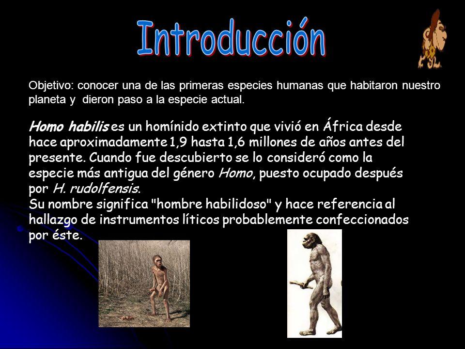 Objetivo: conocer una de las primeras especies humanas que habitaron nuestro planeta y dieron paso a la especie actual. Homo habilis es un homínido ex