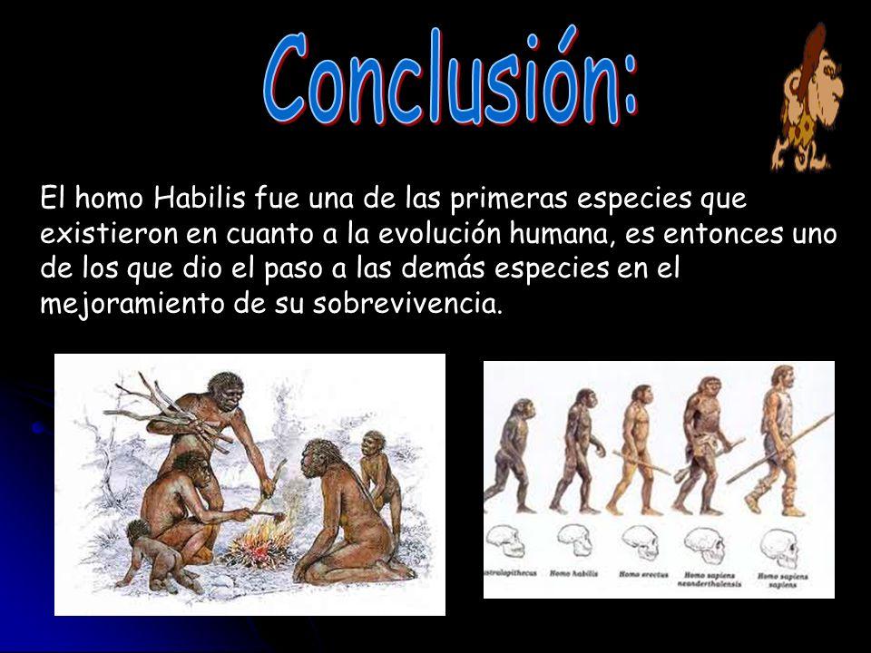 El homo Habilis fue una de las primeras especies que existieron en cuanto a la evolución humana, es entonces uno de los que dio el paso a las demás es