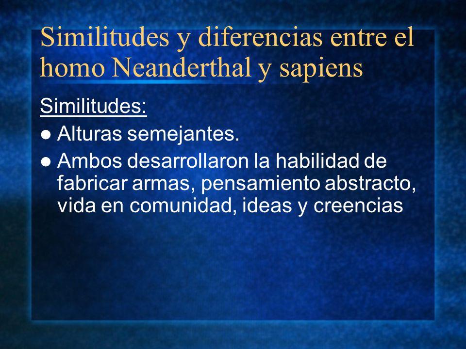 Similitudes y diferencias entre el homo Neanderthal y sapiens Similitudes: Alturas semejantes. Ambos desarrollaron la habilidad de fabricar armas, pen