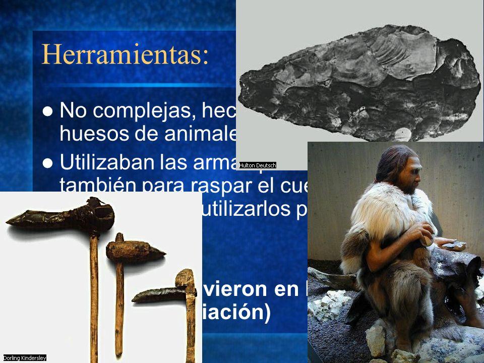 Herramientas: No complejas, hechas de piedras o huesos de animales. Utilizaban las armas para cazar y también para raspar el cuero de los animales par