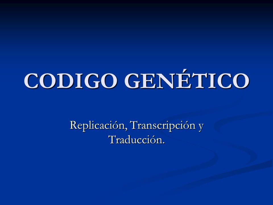 CODIGO GENÉTICO Replicación, Transcripción y Traducción.