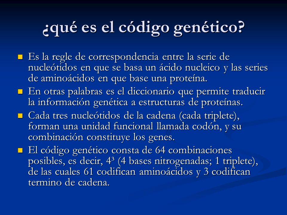¿qué es el código genético? Es la regle de correspondencia entre la serie de nucleótidos en que se basa un ácido nucleico y las series de aminoácidos