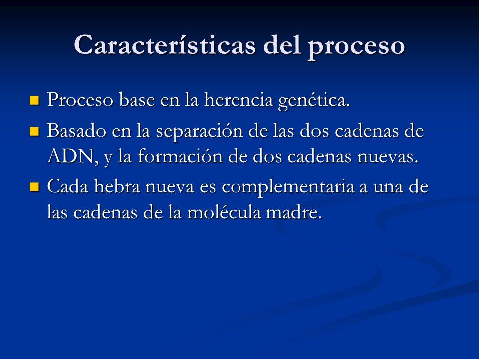 Características del proceso Proceso base en la herencia genética. Proceso base en la herencia genética. Basado en la separación de las dos cadenas de