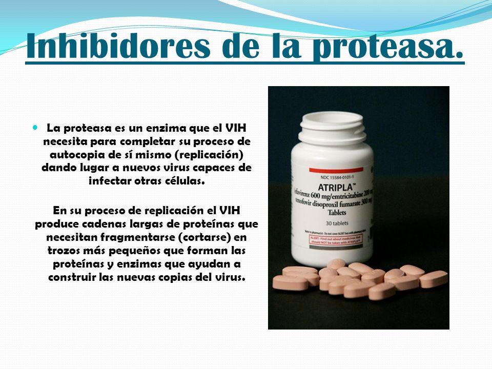 Inhibidores de la proteasa. La proteasa es un enzima que el VIH necesita para completar su proceso de autocopia de sí mismo (replicación) dando lugar