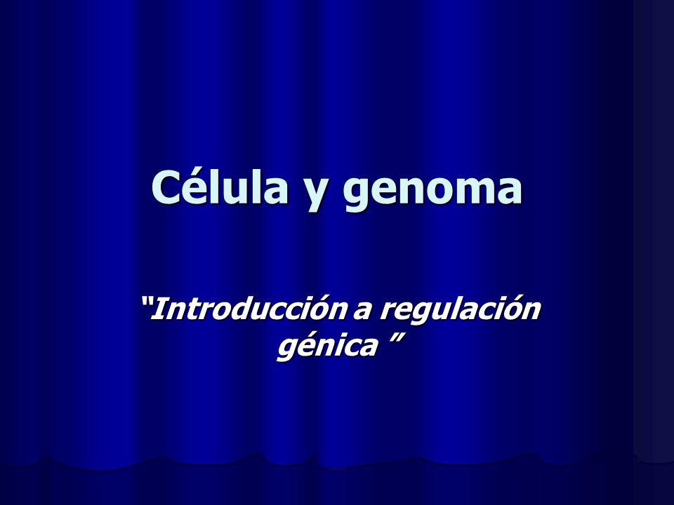 Célula y genoma Introducción a regulación génica Introducción a regulación génica