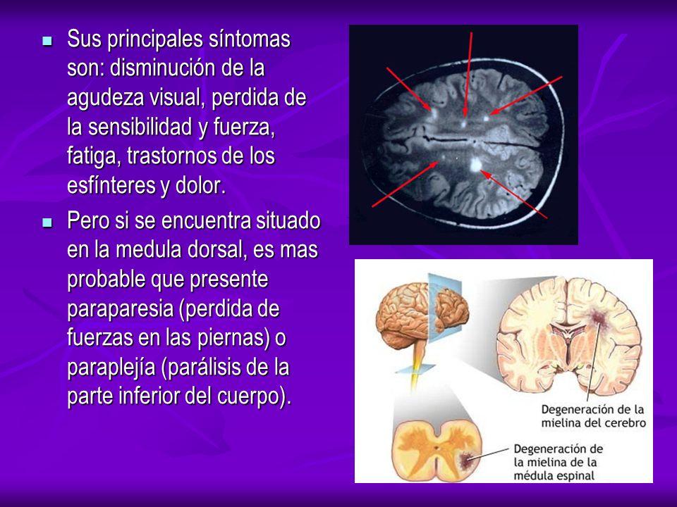 Sus principales síntomas son: disminución de la agudeza visual, perdida de la sensibilidad y fuerza, fatiga, trastornos de los esfínteres y dolor.