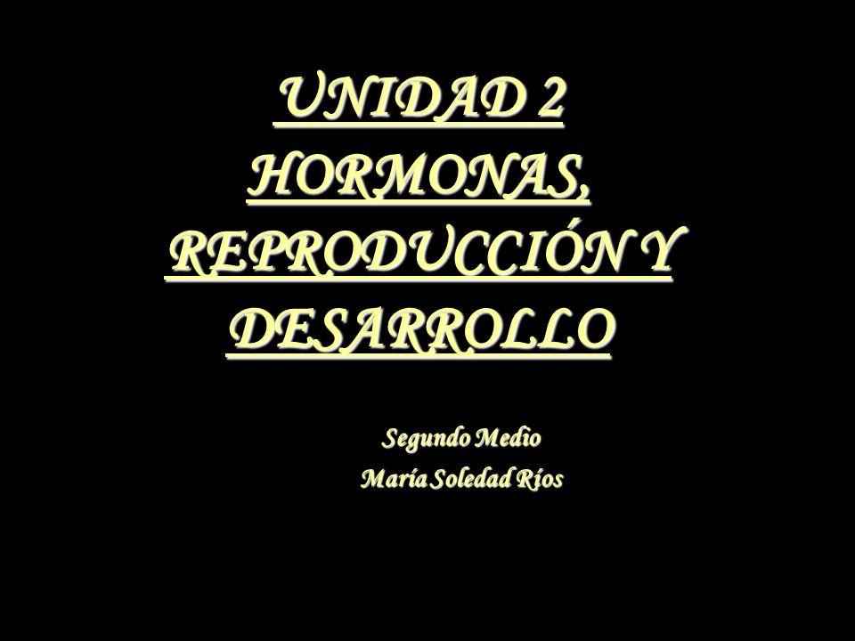 UNIDAD 2 HORMONAS, REPRODUCCIÓN Y DESARROLLO Segundo Medio María Soledad Ríos