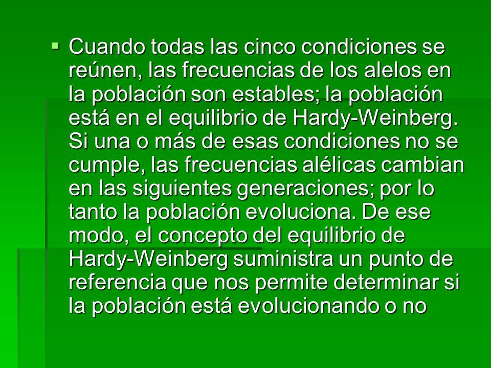 Cuando todas las cinco condiciones se reúnen, las frecuencias de los alelos en la población son estables; la población está en el equilibrio de Hardy-