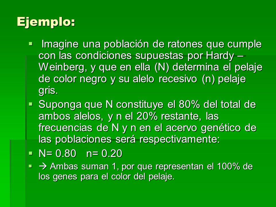Ejemplo: Imagine una población de ratones que cumple con las condiciones supuestas por Hardy – Weinberg, y que en ella (N) determina el pelaje de colo