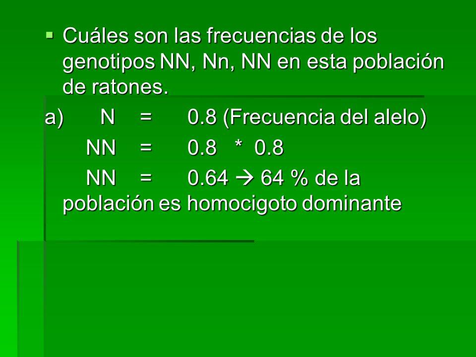 Cuáles son las frecuencias de los genotipos NN, Nn, NN en esta población de ratones. Cuáles son las frecuencias de los genotipos NN, Nn, NN en esta po