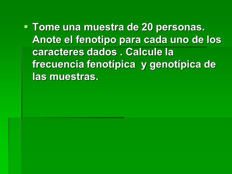 Tome una muestra de 20 personas. Anote el fenotipo para cada uno de los caracteres dados. Calcule la frecuencia fenotípica y genotípica de las muestra