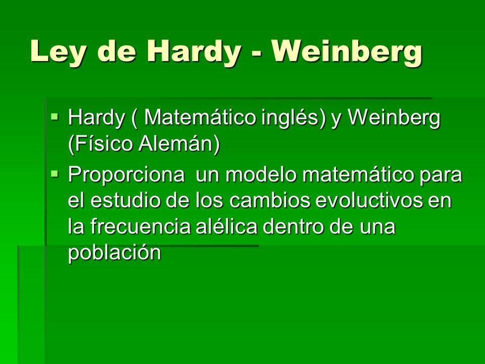 Ley de Hardy - Weinberg Hardy ( Matemático inglés) y Weinberg (Físico Alemán) Hardy ( Matemático inglés) y Weinberg (Físico Alemán) Proporciona un mod