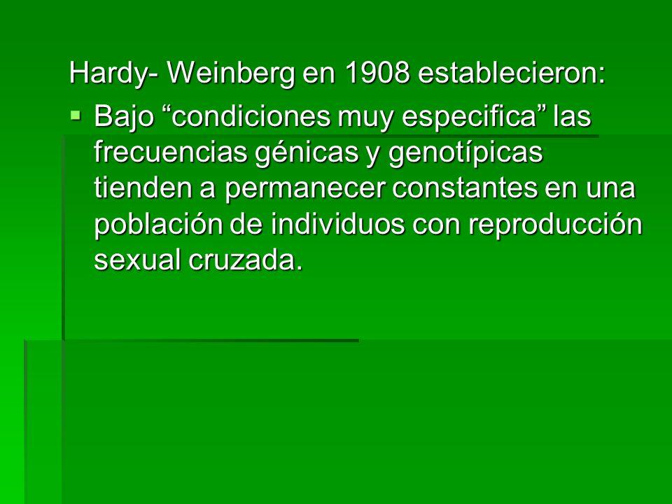 Hardy- Weinberg en 1908 establecieron: Bajo condiciones muy especifica las frecuencias génicas y genotípicas tienden a permanecer constantes en una po