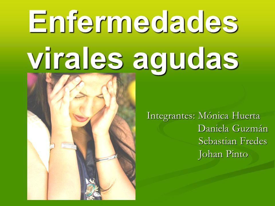 Enfermedades virales agudas Integrantes: Mónica Huerta Daniela Guzmán Daniela Guzmán Sebastian Fredes Sebastian Fredes Johan Pinto Johan Pinto