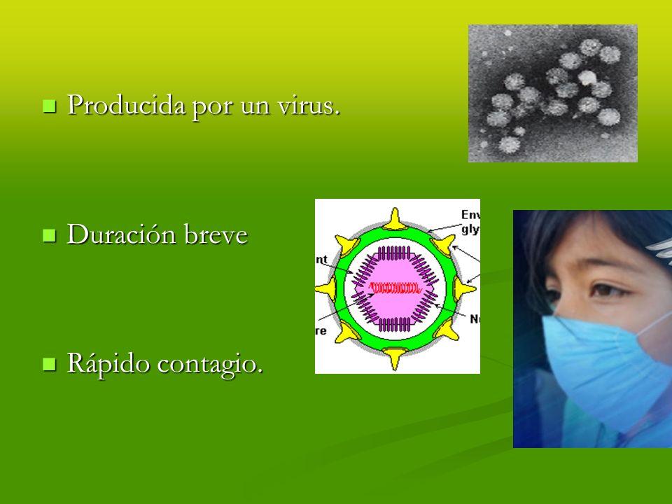Enfermedades virales. SIDA. (VIH) SIDA. (VIH)