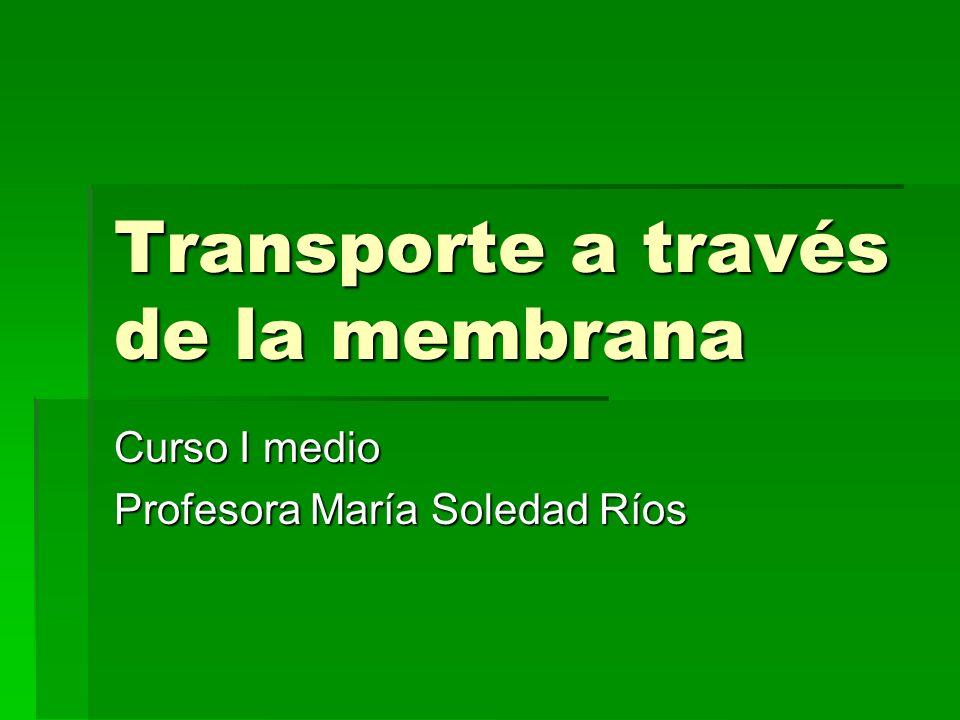 Transporte a través de la membrana Curso I medio Profesora María Soledad Ríos
