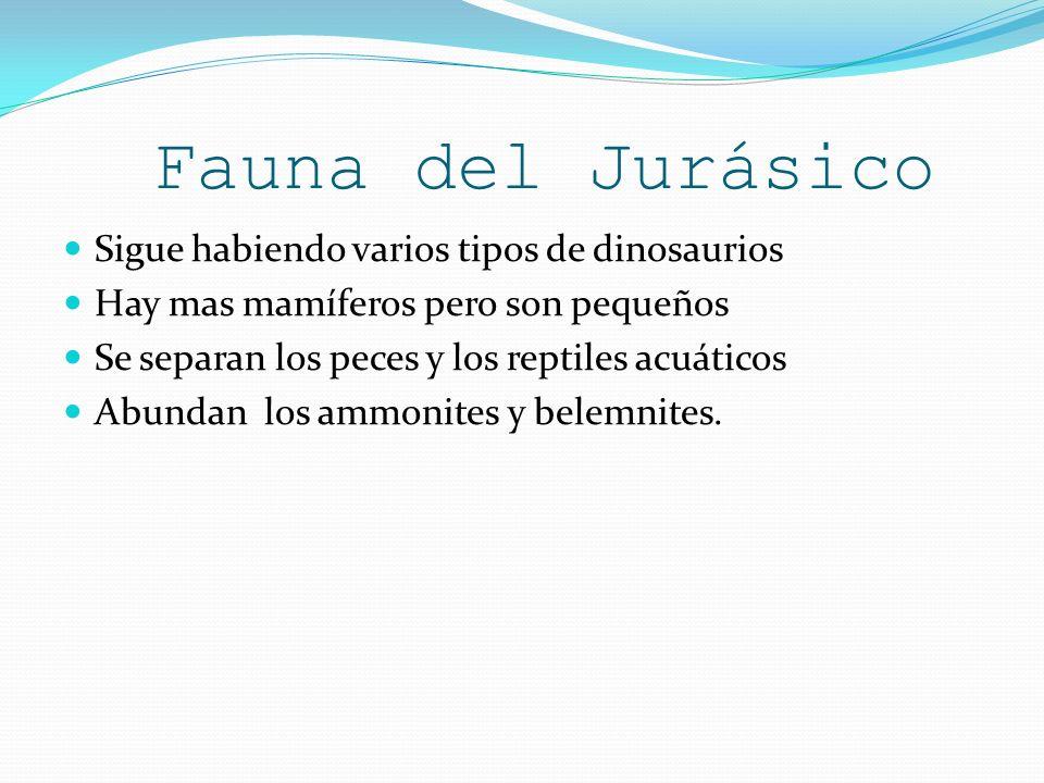 Fauna del Jurásico Sigue habiendo varios tipos de dinosaurios Hay mas mamíferos pero son pequeños Se separan los peces y los reptiles acuáticos Abunda