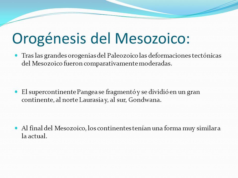 Orogénesis del Mesozoico: Tras las grandes orogenias del Paleozoico las deformaciones tectónicas del Mesozoico fueron comparativamente moderadas. El s