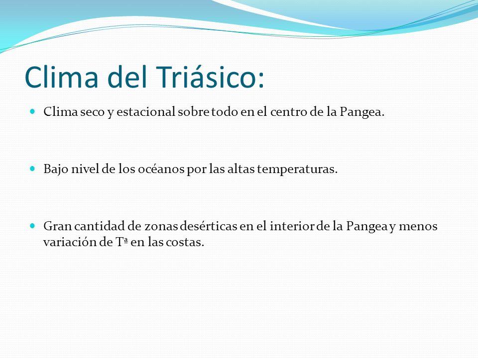 Clima del Triásico: Clima seco y estacional sobre todo en el centro de la Pangea. Bajo nivel de los océanos por las altas temperaturas. Gran cantidad