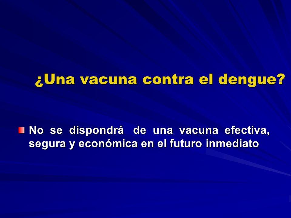 ¿Una vacuna contra el dengue? No se dispondrá de una vacuna efectiva, segura y económica en el futuro inmediato