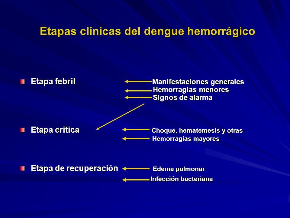 Etapas clínicas del dengue hemorrágico Etapa febril Manifestaciones generales Hemorragias menores Hemorragias menores Signos de alarma Signos de alarm