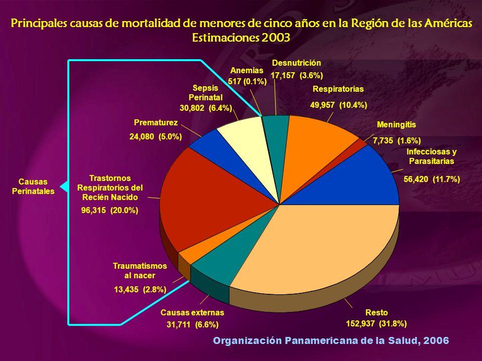 Organización Panamericana de la Salud, 2006 Principales causas de mortalidad de menores de cinco años en la Región de las Américas Estimaciones 2003 Infecciosas y Parasitarias 56,420 (11.7%) Meningitis 7,735 (1.6%) Respiratorias 49,957 (10.4%) Desnutrición 17,157 (3.6%) Anemias 517 (0.1%) Sepsis Perinatal 30,802 (6.4%) Prematurez 24,080 (5.0%) Trastornos Respiratorios del Recién Nacido 96,315 (20.0%) Traumatismos al nacer 13,435 (2.8%) Causas externas 31,711 (6.6%) Resto 152,937 (31.8%) Causas Perinatales