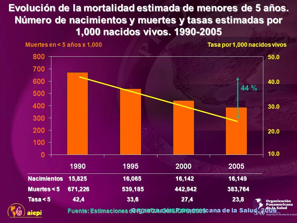 Organización Panamericana de la Salud, 2006 Muertes en < 5 años x 1,000Tasa por 1,000 nacidos vivos 10.0 20.0 30.0 40.0 50.0 44 % Nacimientos 15,825 16,065 16,142 16,149 Muertes < 5 671,226 539,185 442,942 383,764 Tasa < 5 42,4 33,6 27,4 23,8 Fuente: Estimaciones de FCH/CA.