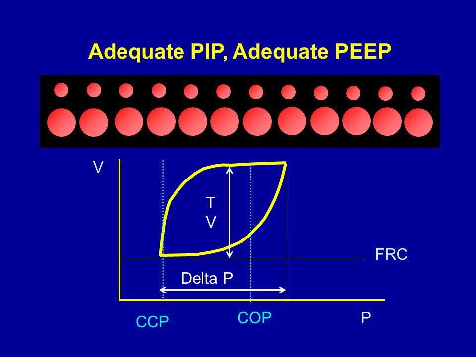 Adequate PIP, Adequate PEEP COP CCP FRC P V TVTV Delta P