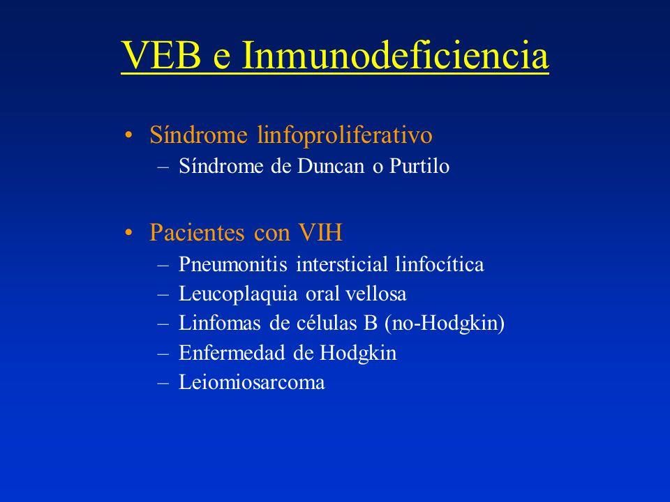 VEB e Inmunodeficiencia Síndrome linfoproliferativo –Síndrome de Duncan o Purtilo Pacientes con VIH –Pneumonitis intersticial linfocítica –Leucoplaqui