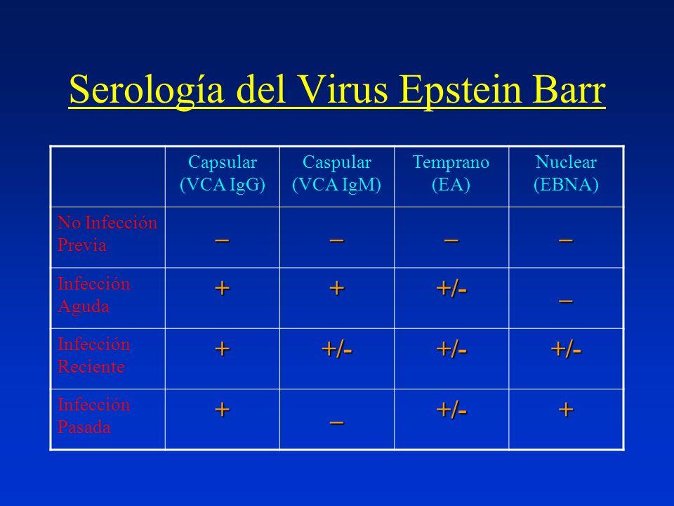 Serología del Virus Epstein Barr Capsular (VCA IgG) Caspular (VCA IgM) Temprano (EA) Nuclear (EBNA) No Infección Previa____ Infección Aguda+++/-_ Infe