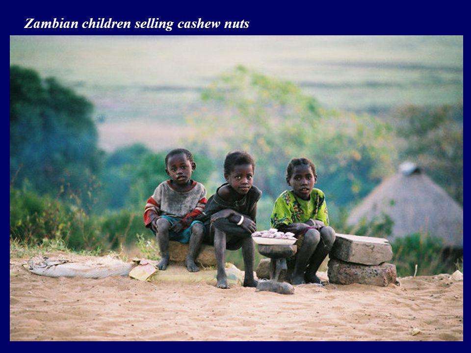 Zambian children selling cashew nuts