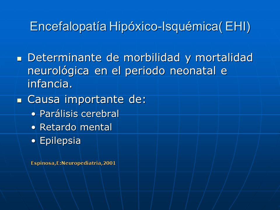 Encefalopatía Hipóxico-Isquémica( EHI) Determinante de morbilidad y mortalidad neurológica en el periodo neonatal e infancia. Determinante de morbilid