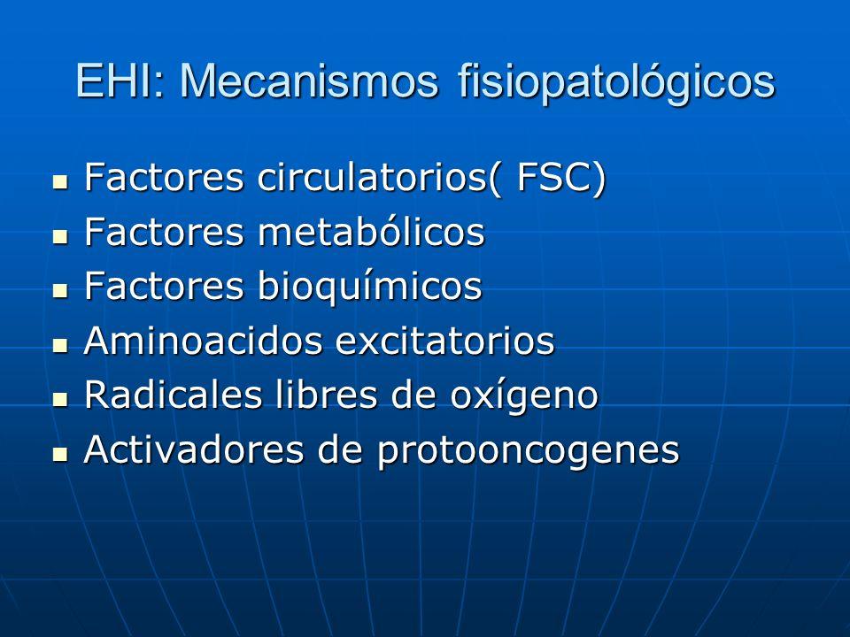 EHI: Mecanismos fisiopatológicos Factores circulatorios( FSC) Factores circulatorios( FSC) Factores metabólicos Factores metabólicos Factores bioquími