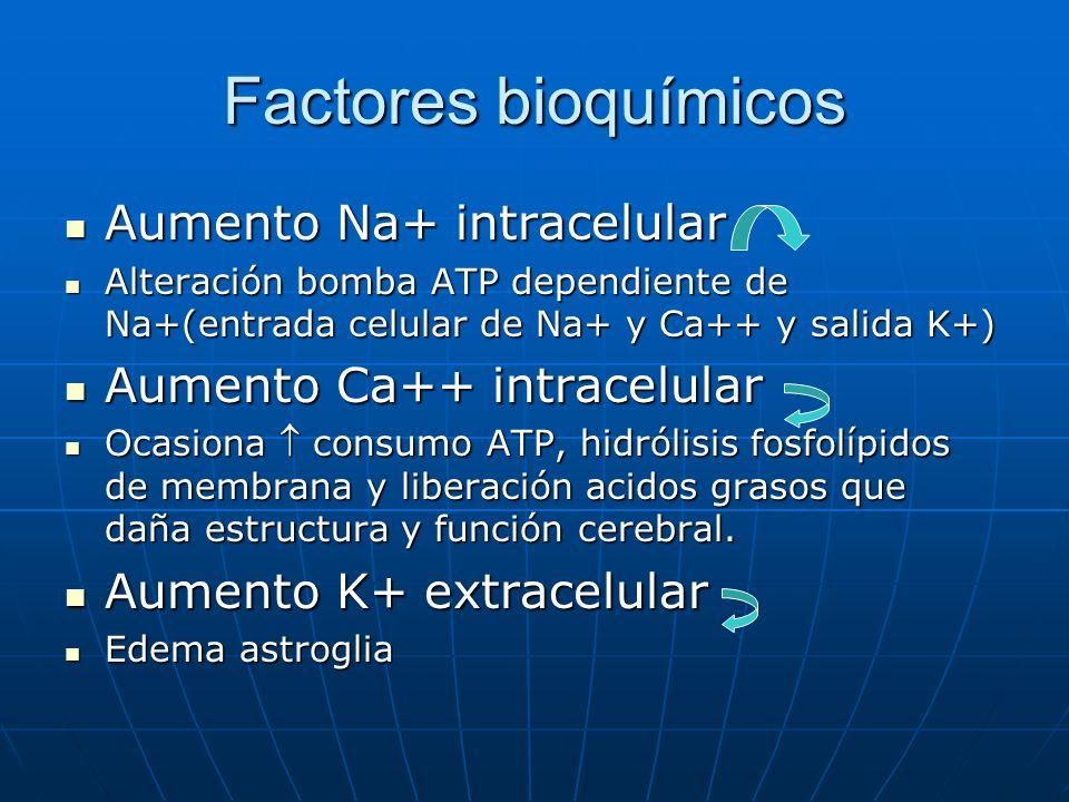 Factores bioquímicos Aumento Na+ intracelular Aumento Na+ intracelular Alteración bomba ATP dependiente de Na+(entrada celular de Na+ y Ca++ y salida