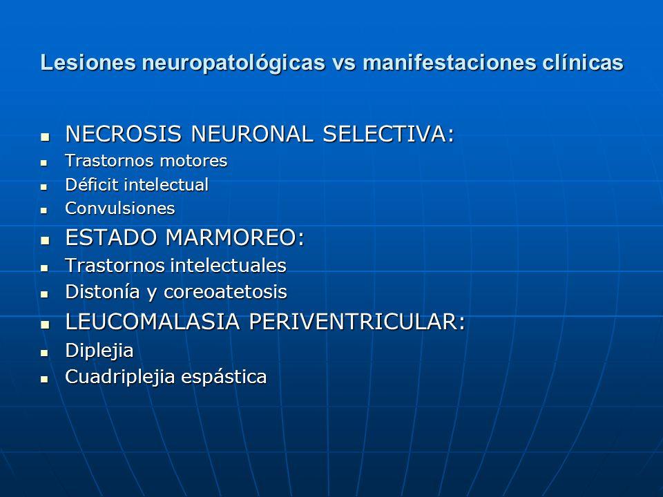 Lesiones neuropatológicas vs manifestaciones clínicas NECROSIS NEURONAL SELECTIVA: NECROSIS NEURONAL SELECTIVA: Trastornos motores Trastornos motores
